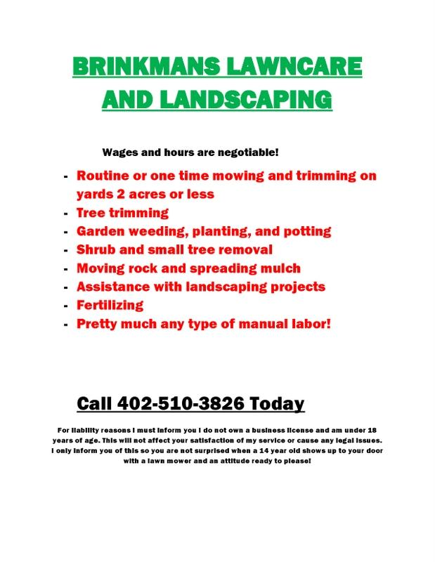 BRINKMANS LAWNCARE AND LANDSCAPING page0001