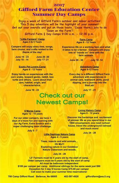 2017 Summer Day Camp Facebook Flyer